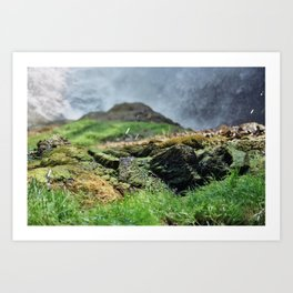 Wet Rocks Art Print