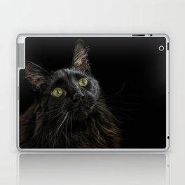 Condor Laptop & iPad Skin