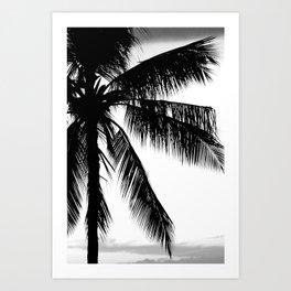 Tropical Darkroom #284 Art Print