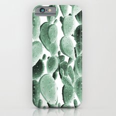 Perfect Desert Cactus Bunch iPhone 6s Slim Case