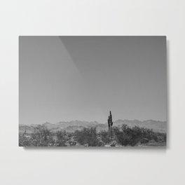 124 | arizona Metal Print