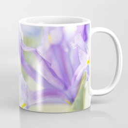 Flag iris in spring sunlight on a bright sunburst Coffee Mug