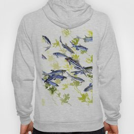 Fish Blue Gray zebrafish, Danio aquarium Aquatic design underwater scene Hoody