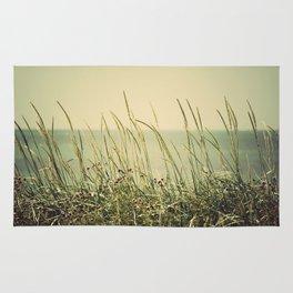Summer Rug