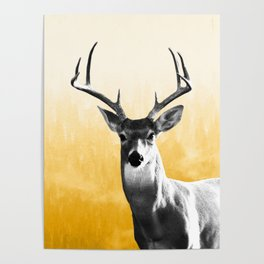 Deer Art Print Poster