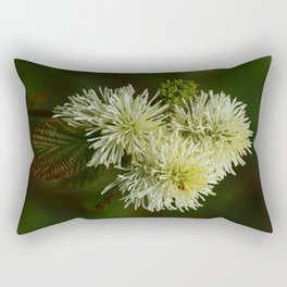 Fothergilla Major - Mountain Witchalder Rectangular Pillow