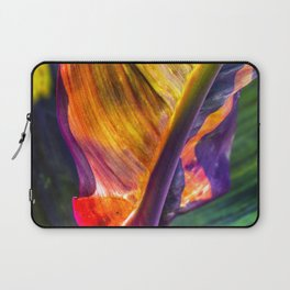 Natural Geometry / 3 Laptop Sleeve