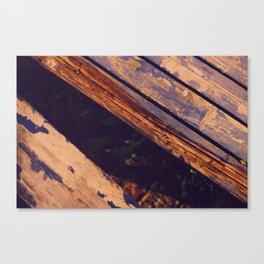 Lines II  Canvas Print