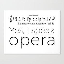 I speak opera (mezzo-soprano) Canvas Print