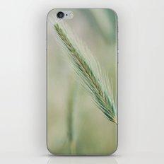 Espiga iPhone & iPod Skin