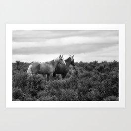 Palomino Buttes Herd - Wild Horses BW Art Print