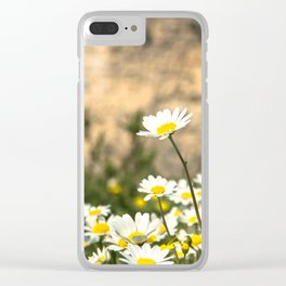 Spring Camomile Clear iPhone Case
