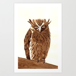 Golden Eyed Owl Art Print