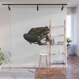 Frog 6 Wall Mural
