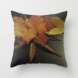 autumn arranged Throw Pillow