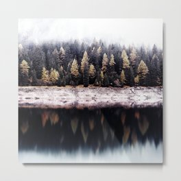 Into the wild #09 Metal Print