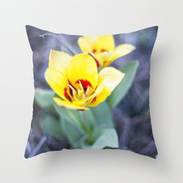 Early Bloom Throw Pillow