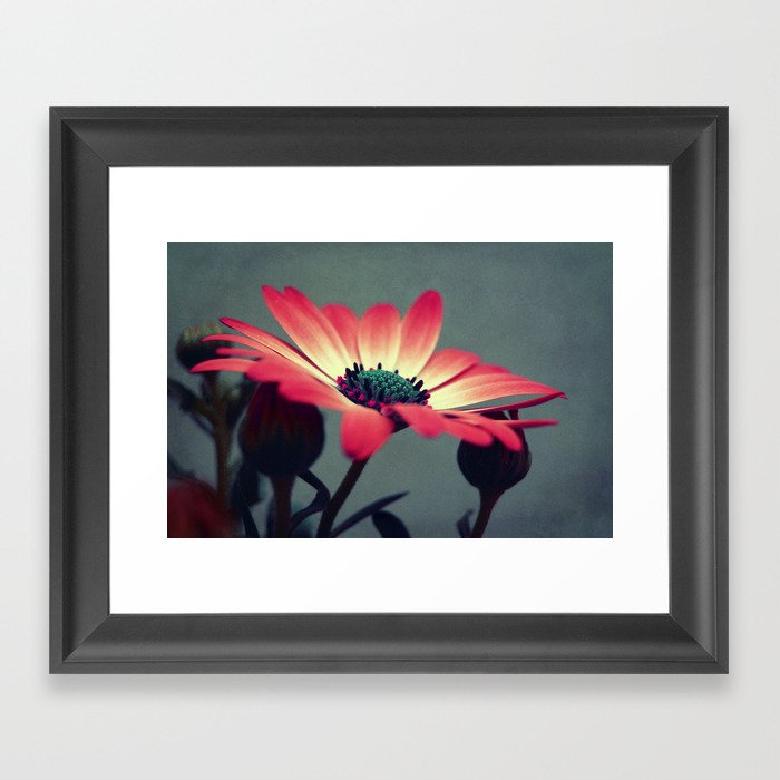 Look for your middle Framed Art Print