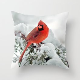 Cardinal on Snowy Branch #2 Throw Pillow