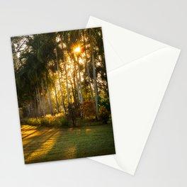 Sunburst at Litchfield National Park Stationery Cards