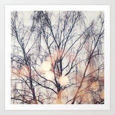 Tree & Bokeh Art Print
