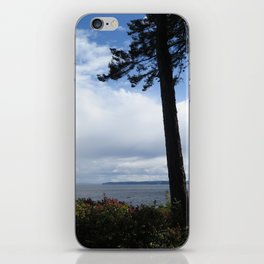 Pointe Trees 10 iPhone Skin