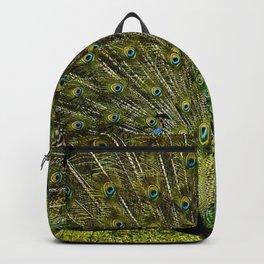 Peacock in full regalia Backpack