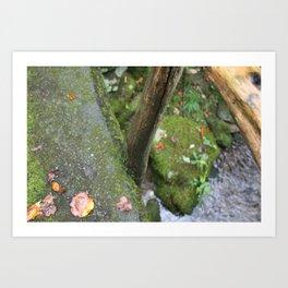 Stone Trails Art Print