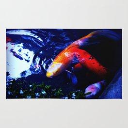 Koi Fish play coy Rug