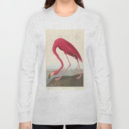 Vintage Flamingo Illustration (1838) Long Sleeve T-shirt