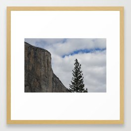 Yosemite looking up. Framed Art Print