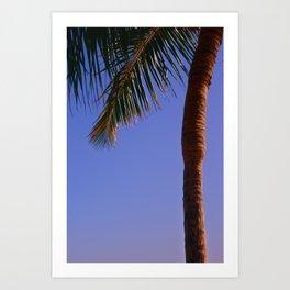 Simply Paradise Art Print