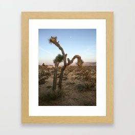 Dusk in Joshua Tree (iPhone) Framed Art Print