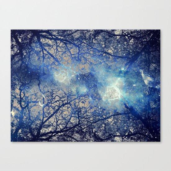 Winter Wood Canvas Print