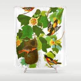 Baltimore Oriole Bird Shower Curtain