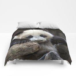 Baby panda climb a tree Comforters
