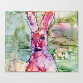 Darko Bunny Canvas Print