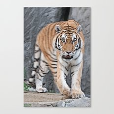 I'm watching you Canvas Print