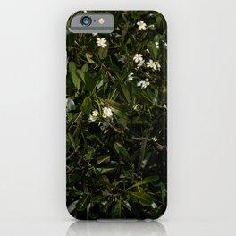 Bonitu i Flores Plumeria iPhone Case
