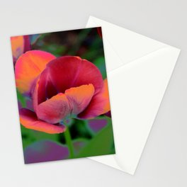 Colorful Tulips Stationery Cards