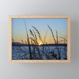 Sunset Sea Grass Framed Mini Art Print