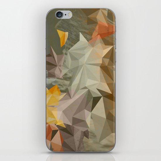 Hall of mirrors iPhone & iPod Skin