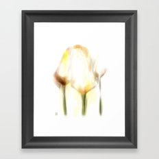 Three Tulips Framed Art Print