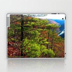 Pennsylvania Grand Canyon Laptop & iPad Skin