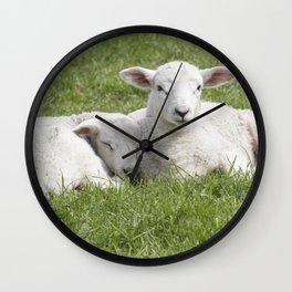 Spring little lambs Wall Clock