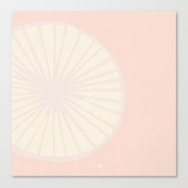 Peachy Citrus Canvas Print