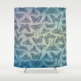 Lepidoptera Blue Shower Curtain