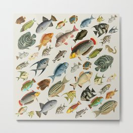 vintage fish swim on bone Metal Print