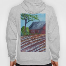 Rows of Cotton Hoody
