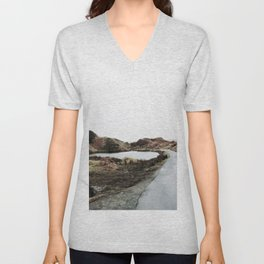 Road through Fairy Glen Unisex V-Neck